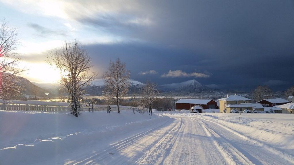 4年ぶりの大雪。カーポートは無事でした!